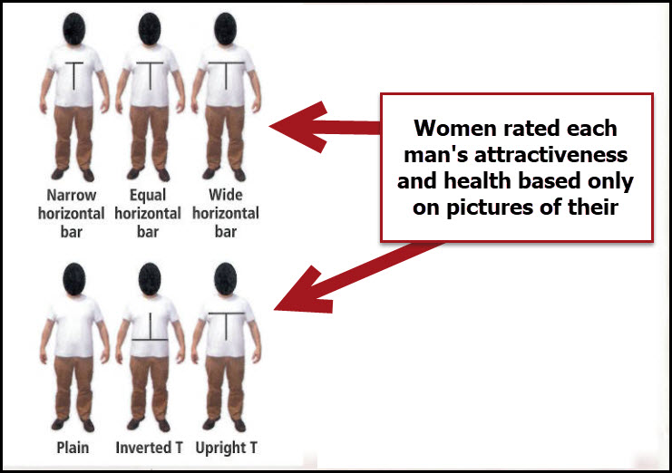 Women rated men's attractiveness based on body type.
